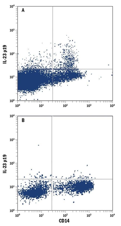 IL-23 p19 Mouse anti-Human, PE, Clone: 727753, Invitrogen 100 Tests; PE
