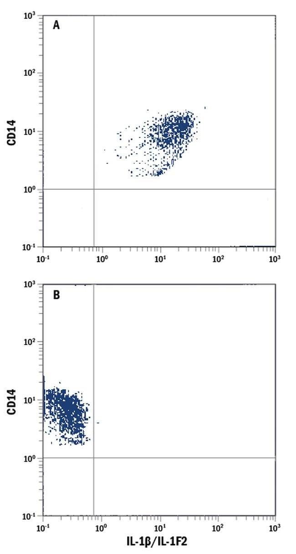 IL-1 beta Mouse anti-Human, FITC, Clone: 8516, Invitrogen 100 Tests; FITC