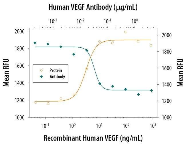 VEGF Mouse anti-Human, Clone: 26503, Invitrogen 500 µg; Unconjugated
