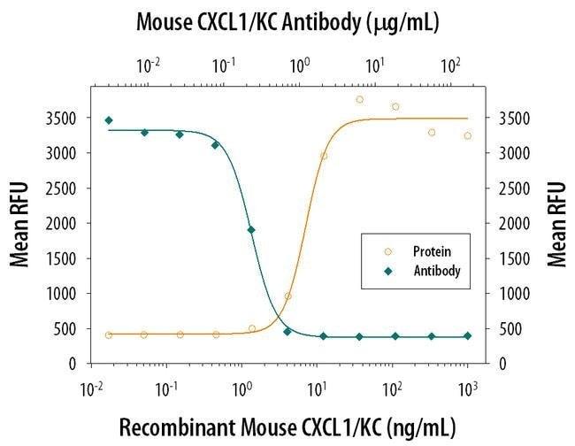 CXCL1 Rat anti-Mouse, Clone: 48415, Invitrogen 500 µg; Unconjugated