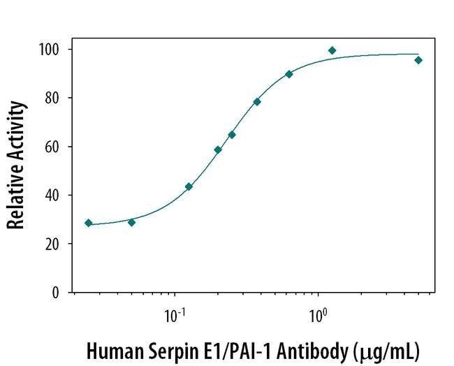 PAI1 Mouse anti-Human, Clone: 242816, Invitrogen 500 µg; Unconjugated