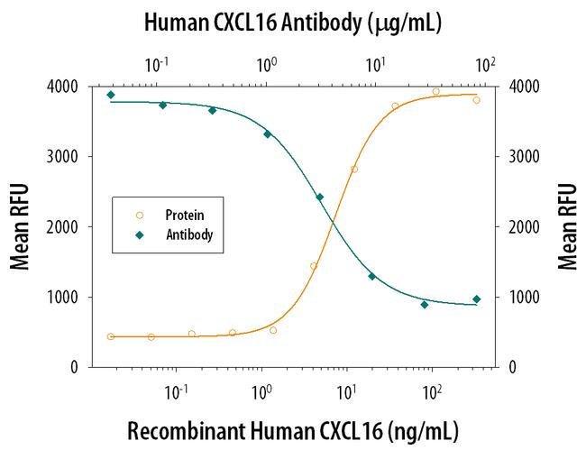 CXCL16 Rat anti-Human, Clone: 256213, Invitrogen 100 µg; Unconjugated