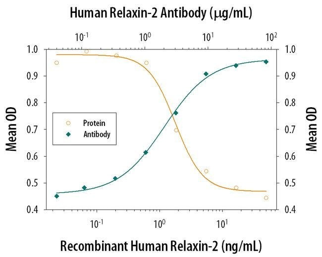 Relaxin 2 Rat anti-Human, Clone: 349102, Invitrogen 100 µg; Unconjugated