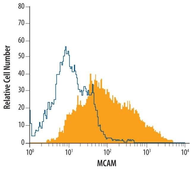 CD146 Mouse anti-Rat, Clone: 404722, Invitrogen 100 µg; Unconjugated