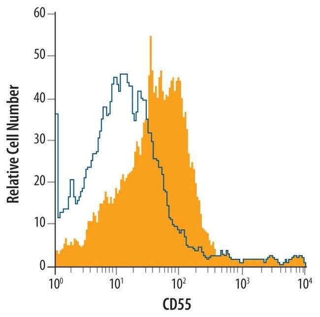 CD55 Rat anti-Mouse, Clone: 583905, Invitrogen 100 µg; Unconjugated