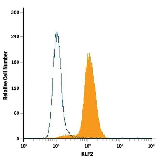 KLF2 Mouse anti-Human, Clone: 665333, Invitrogen 100 µg; Unconjugated