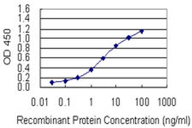 RAI1 Mouse anti-Human, Clone: 6H5, Invitrogen 100 µg; Unconjugated