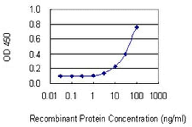 THG1L Mouse anti-Human, Clone: 4F11, Invitrogen 100 µg; Unconjugated
