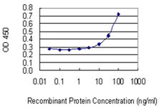 PMVK Mouse anti-Human, Clone: 2B8, Invitrogen 100 µg; Unconjugated