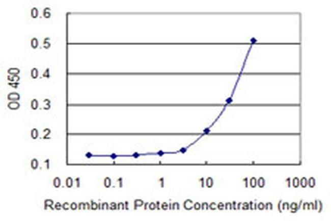 Calpain 15 Mouse anti-Human, Clone: 4E2, Invitrogen 100 µg; Unconjugated