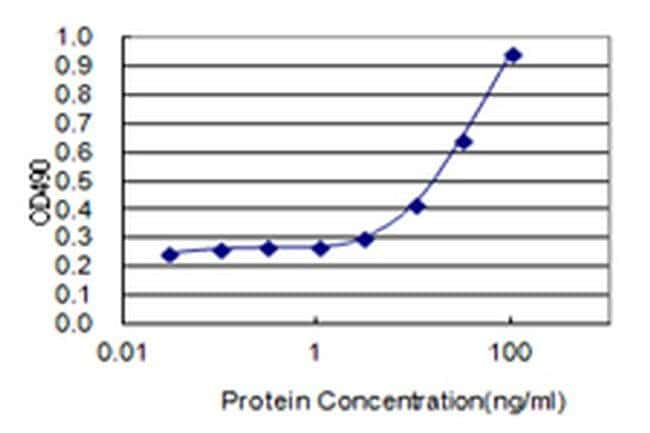Enkurin Mouse anti-Human, Clone: 3B3, Invitrogen 100 µg; Unconjugated
