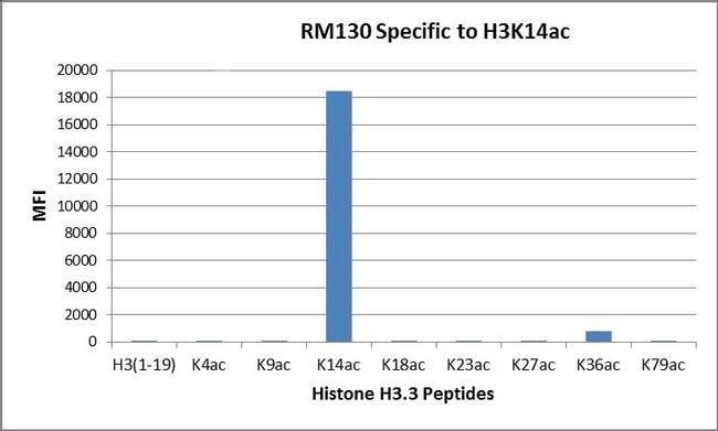 Acetyl-Histone H3 (Lys14) Rabbit anti-Human, Invitrogen 100 µg; Unconjugated