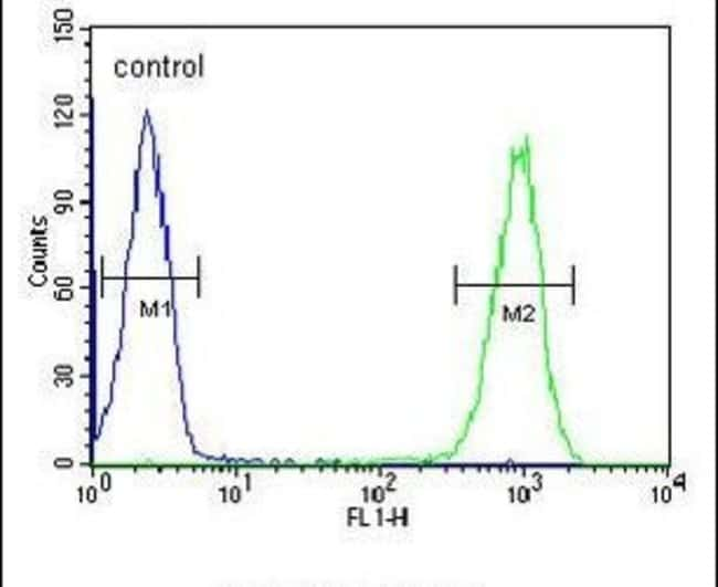 TMEM57 Rabbit anti-Human, Polyclonal, Invitrogen 400 µL; Unconjugated