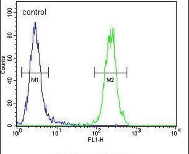 MAF1 Rabbit anti-Human, Mouse, Polyclonal, Invitrogen 400 µL; Unconjugated