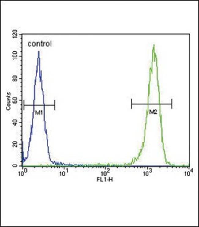 MC2R Rabbit anti-Human, Polyclonal, Invitrogen 400 µL; Unconjugated
