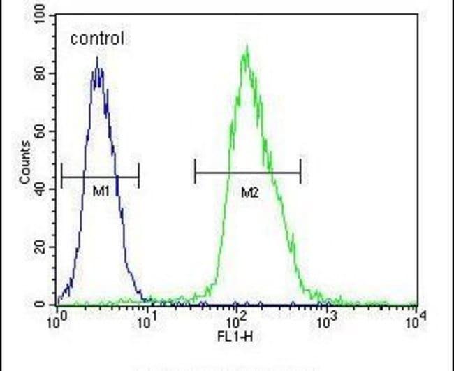 MFAP4 Rabbit anti-Human, Mouse, Polyclonal, Invitrogen 400 µL; Unconjugated