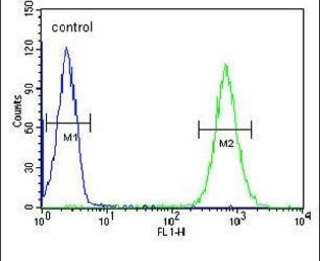 MICALL2 Rabbit anti-Human, Polyclonal, Invitrogen 400 µL; Unconjugated