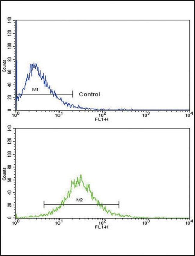 MMP3 Rabbit anti-Human, Polyclonal, Invitrogen 400 µL; Unconjugated
