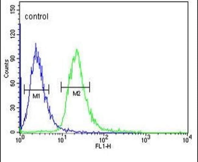 MTNR1A Rabbit anti-Human, Polyclonal, Invitrogen 400 µL; Unconjugated