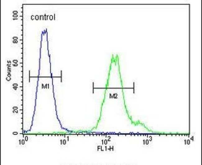 MTX2 Rabbit anti-Human, Polyclonal, Invitrogen 400 µL; Unconjugated