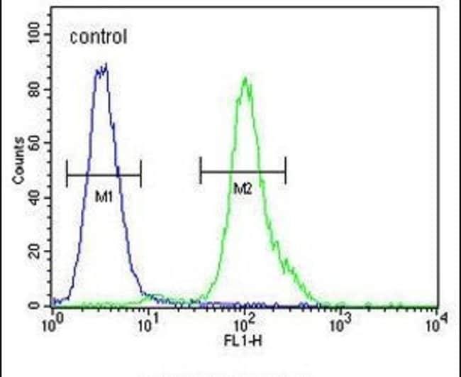 MYCT1 Rabbit anti-Human, Polyclonal, Invitrogen 400 µL; Unconjugated