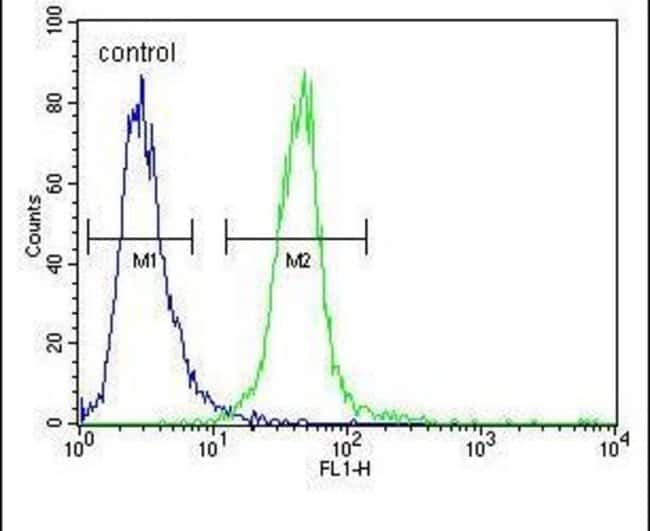 MYOZ1 Rabbit anti-Human, Mouse, Polyclonal, Invitrogen 400 µL; Unconjugated