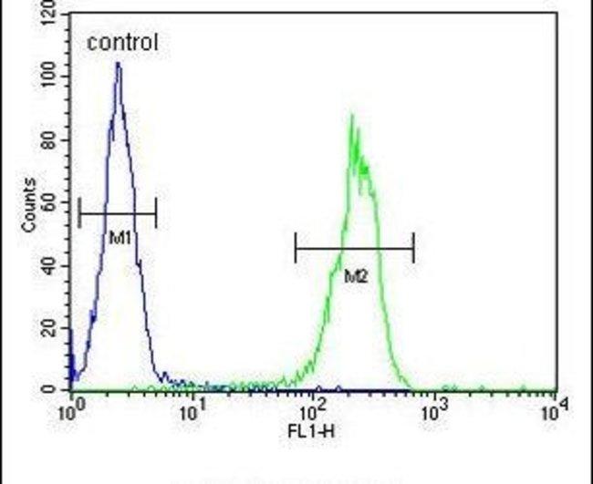 MYSM1 Rabbit anti-Human, Mouse, Polyclonal, Invitrogen 400 µL; Unconjugated