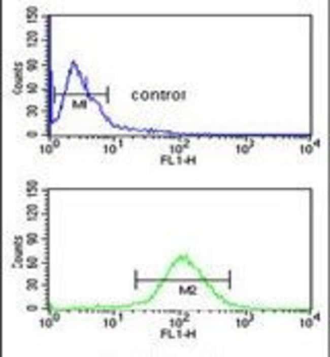 NARFL Rabbit anti-Human, Polyclonal, Invitrogen 400 µL; Unconjugated