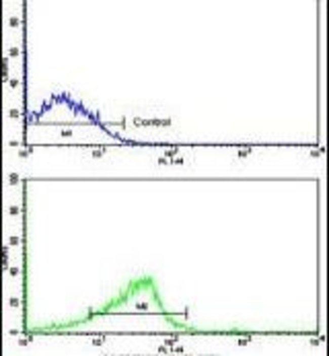 NCS1 Rabbit anti-Human, Polyclonal, Invitrogen 400 µL; Unconjugated