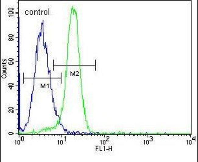 NLK Rabbit anti-Human, Polyclonal, Invitrogen 400 µL; Unconjugated