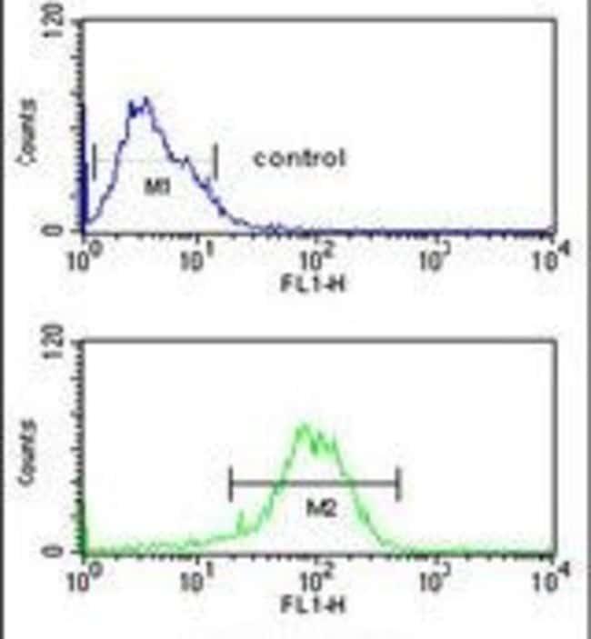 LXR alpha Rabbit anti-Human, Polyclonal, Invitrogen 400 µL; Unconjugated