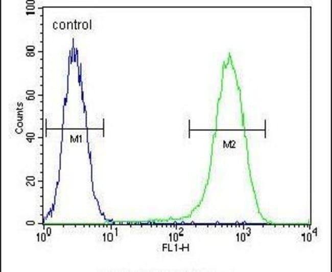 NUDT8 Rabbit anti-Human, Polyclonal, Invitrogen 400 µL; Unconjugated