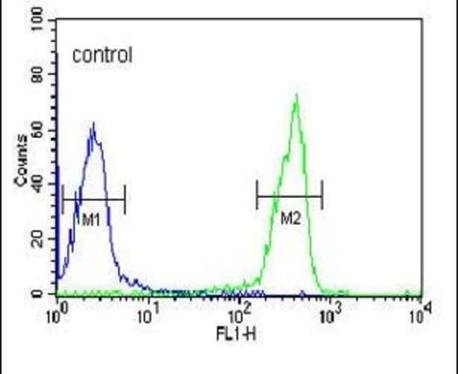 OMD Rabbit anti-Human, Mouse, Polyclonal, Invitrogen 400 µL; Unconjugated
