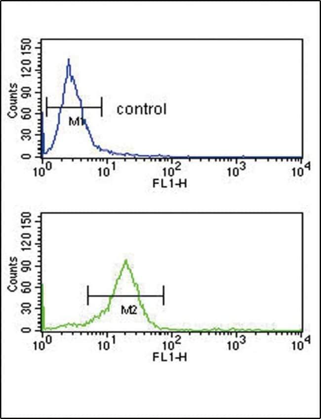 OPRM1 Rabbit anti-Human, Mouse, Polyclonal, Invitrogen 400 µL; Unconjugated