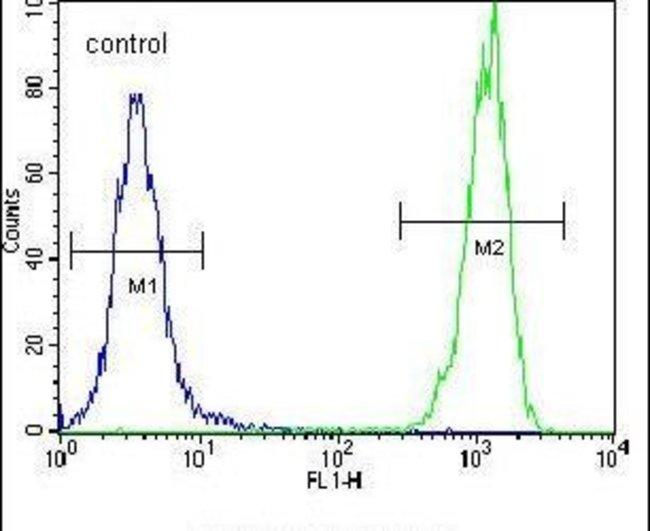 OR10H1 Rabbit anti-Human, Polyclonal, Invitrogen 400 µL; Unconjugated