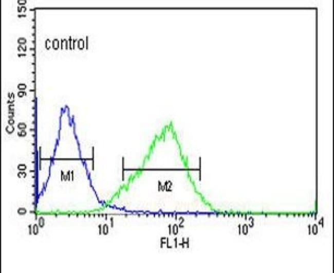 OR2H2 Rabbit anti-Human, Polyclonal, Invitrogen 400 µL; Unconjugated