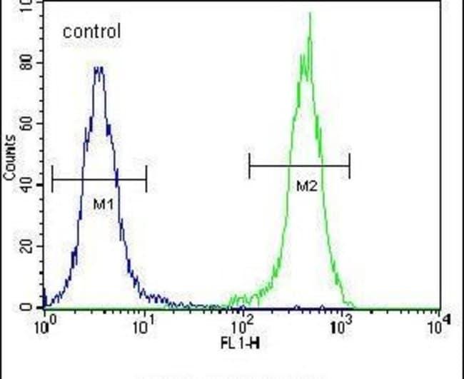 OTUD6B Rabbit anti-Human, Mouse, Polyclonal, Invitrogen 400 µL; Unconjugated