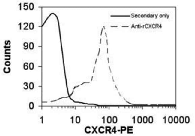 CXCR4 Rabbit anti-Mouse, Rat, Polyclonal, Invitrogen 50 µg; Unconjugated