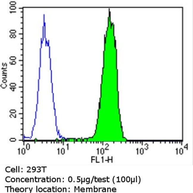 PMP70 Rabbit anti-Human, Mouse, Rat, Polyclonal, Invitrogen 100 µg;