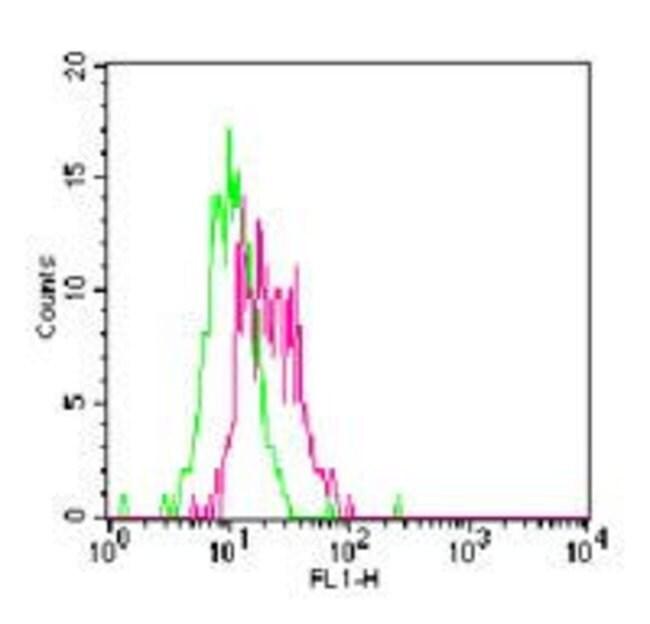 TLR11 Rabbit anti-Mouse, Rat, FITC, Polyclonal, Invitrogen 100 µg;