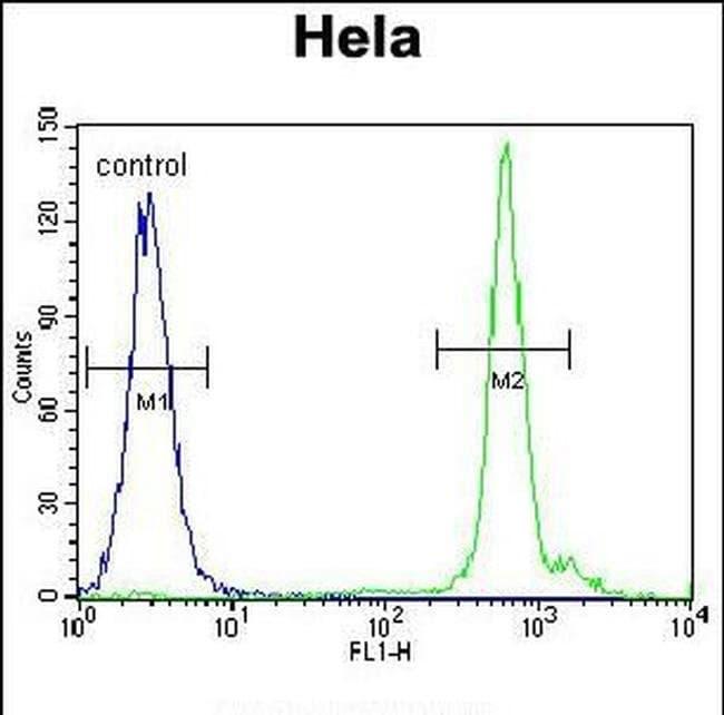 EMG1 Rabbit anti-Human, Polyclonal, Invitrogen 400 µL; Unconjugated
