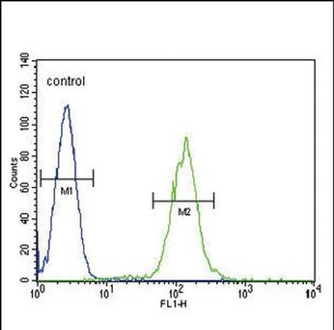 PLA2G2D Rabbit anti-Human, Polyclonal, Invitrogen 400 µL; Unconjugated