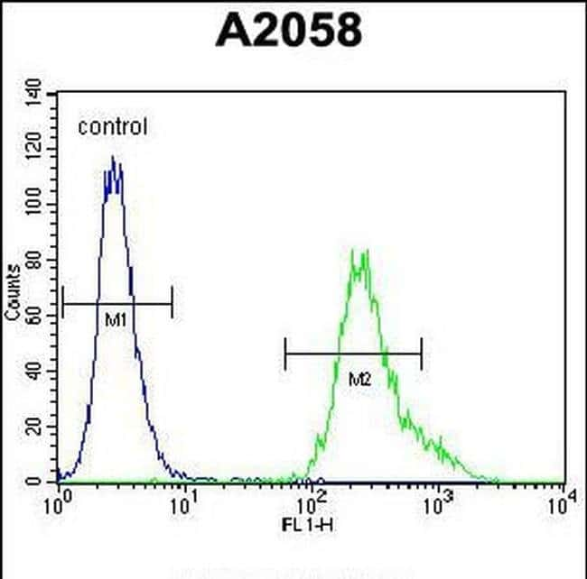 UBXN2A Rabbit anti-Human, Mouse, Polyclonal, Invitrogen 400 µL; Unconjugated