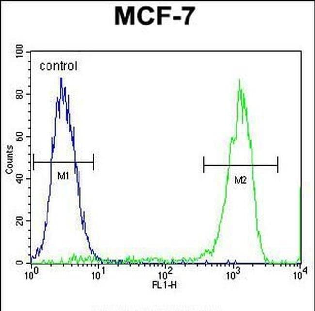 TMEM132E Rabbit anti-Human, Mouse, Polyclonal, Invitrogen 400 µL;