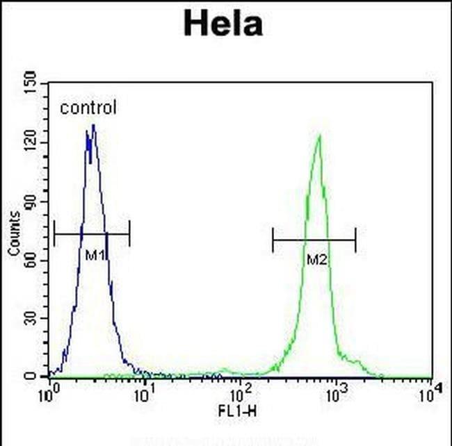 UQCRFS1 Rabbit anti-Human, Polyclonal, Invitrogen 400 µL; Unconjugated