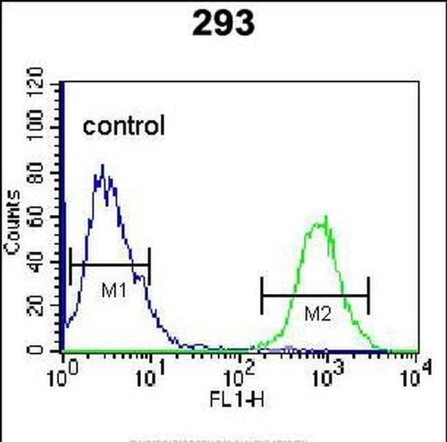 Mimecan Rabbit anti-Human, Polyclonal, Invitrogen 400 µL; Unconjugated