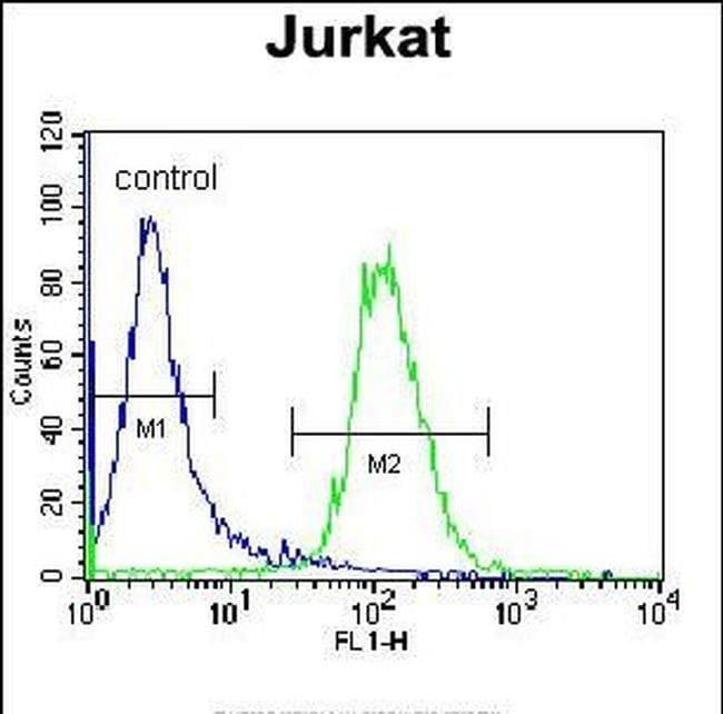 Naked2 Rabbit anti-Human, Polyclonal, Invitrogen 400 µL; Unconjugated
