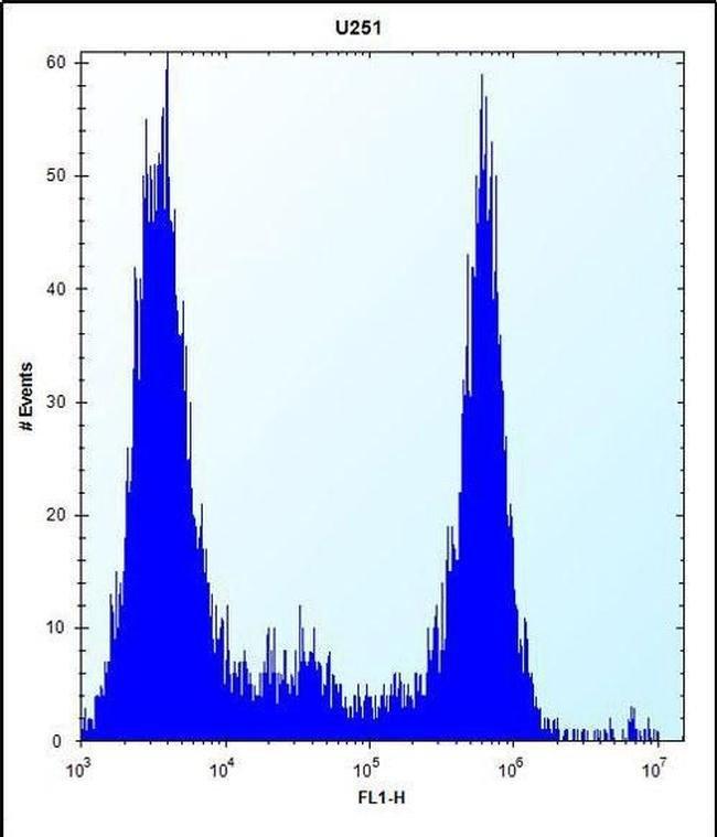 VPS37B Rabbit anti-Human, Polyclonal, Invitrogen 400 µL; Unconjugated