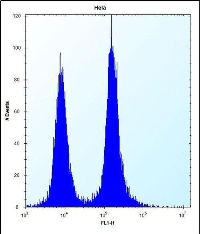DEFB112 Rabbit anti-Human, Polyclonal, Invitrogen 400 µL; Unconjugated