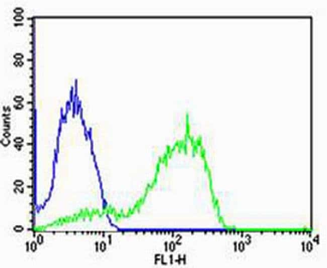 AGAP8 Rabbit anti-Human, Mouse, Polyclonal, Invitrogen 400 µL; Unconjugated